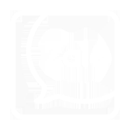 icon Chat Zalo